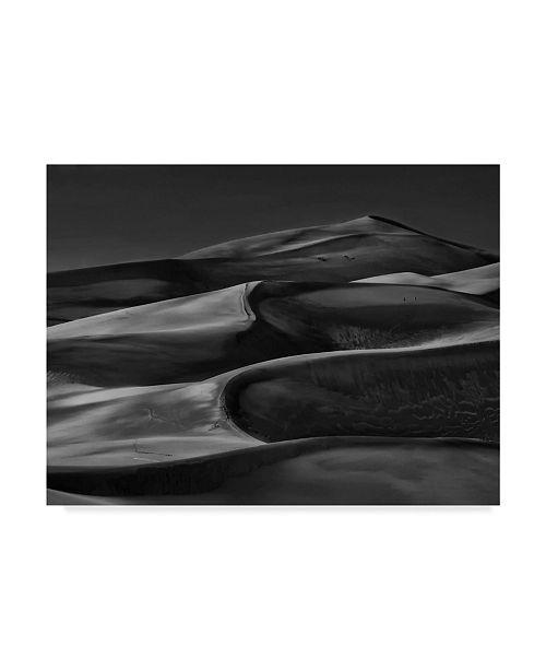 "Trademark Global Yvette Depaepe 'And All Around Is The Desert' Canvas Art - 24"" x 2"" x 18"""