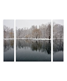 "Kurt Shaffer 'Snowy Pond' Multi Panel Art Set Large 3 Piece - 44"" x 34"" x 2"""
