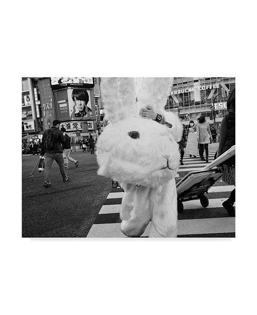 "Trademark Global Tatsuo Suzuki 'The Bunny Suit' Canvas Art - 47"" x 2"" x 35"""