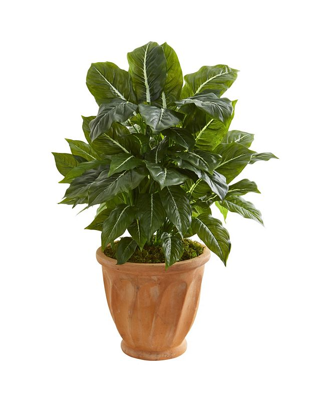 """Nearly Natural 30"""" Evergreen Artificial Plant in Terracotta Planter (Real Touch)"""