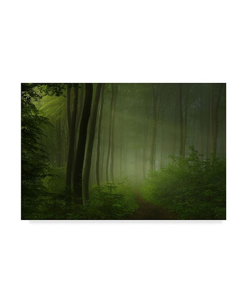"Trademark Innovations Norbert Maier 'Forest Morning' Canvas Art - 47"" x 30"" x 2"""