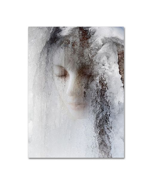 "Trademark Global Jeffrey Hummel 'Ice Queen' Canvas Art - 24"" x 18"" x 2"""