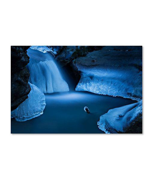 "Trademark Global Michel Manzoni 'Ice Sculptures' Canvas Art - 19"" x 12"" x 2"""