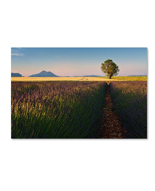 "Trademark Global Izidor Gasperlin 'Singularity' Canvas Art - 24"" x 16"" x 2"""