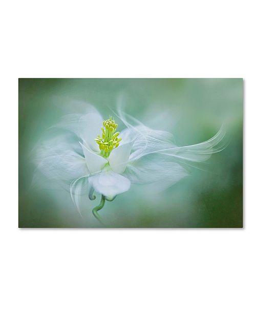 """Trademark Global Jacky Parker 'Mystical' Canvas Art - 19"""" x 12"""" x 2"""""""
