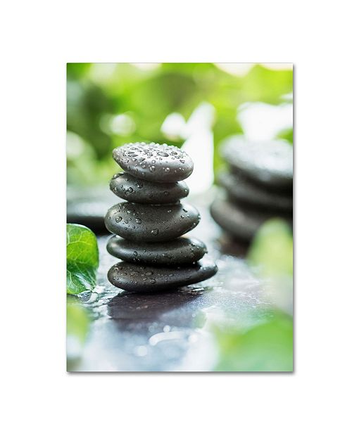 "Trademark Global Johanna 'Zen Pebbles' Canvas Art - 19"" x 14"" x 2"""
