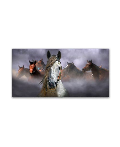 "Trademark Global Kadir Civici 'Horses' Canvas Art - 10"" x 19"" x 2"""