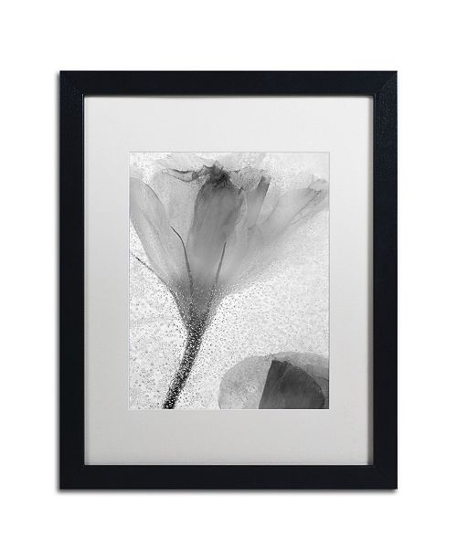 "Trademark Global Moises Levy 'Flowers on Ice-13' Matted Framed Art - 16"" x 20"" x 0.5"""