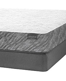 "Aireloom Hybrid 13.5"" Plush Mattress Set- Queen"