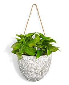 Home Essentials La Dolce Vita Embossed Hanging Planter