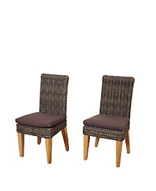 2 Piece Patio Dining Chair Set with Cushions