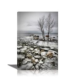 Eurographics Frozen Lake Framed Canvas Wall Art
