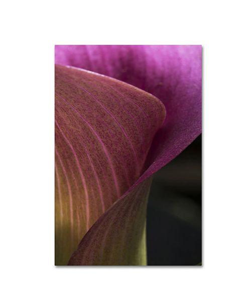 """Trademark Global Kurt Shaffer 'Part of a Calla Lily' Canvas Art - 12"""" x 19"""""""
