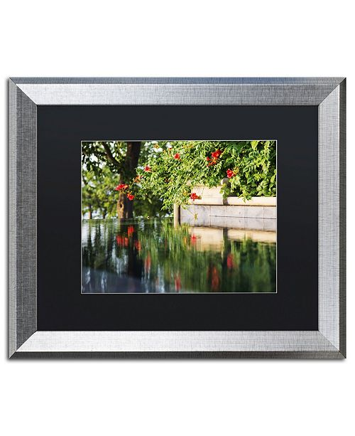 "Trademark Global Kurt Shaffer 'Trumpet Vine by a Pool' Matted Framed Art - 16"" x 20"""