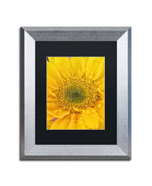 "Trademark Global PIPA Fine Art 'Joyful Color' Matted Framed Art - 11"" x 14"""