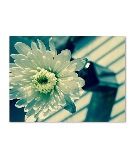 "Trademark Global PIPA Fine Art 'Melancholy Flower' Canvas Art - 14"" x 19"""