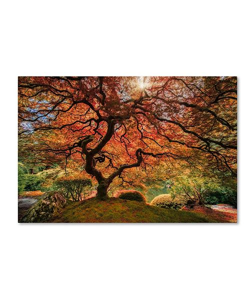 "Trademark Global Moises Levy 'The Tree Horizontal' Canvas Art - 12"" x 19"""