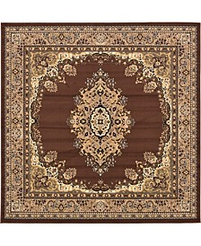 Birsu Bir1 Brown 8' x 8' Square Area Rug