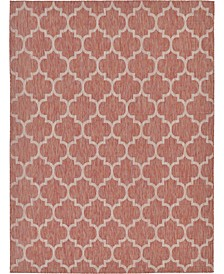 Pashio Pas5 Rust Red 9' x 12' Area Rug
