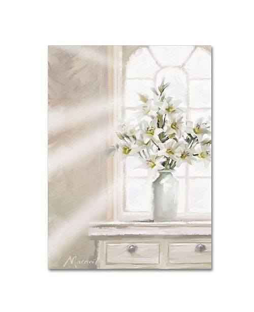 "Trademark Global The Macneil Studio 'Soothing Light' Canvas Art - 18"" x 24"""