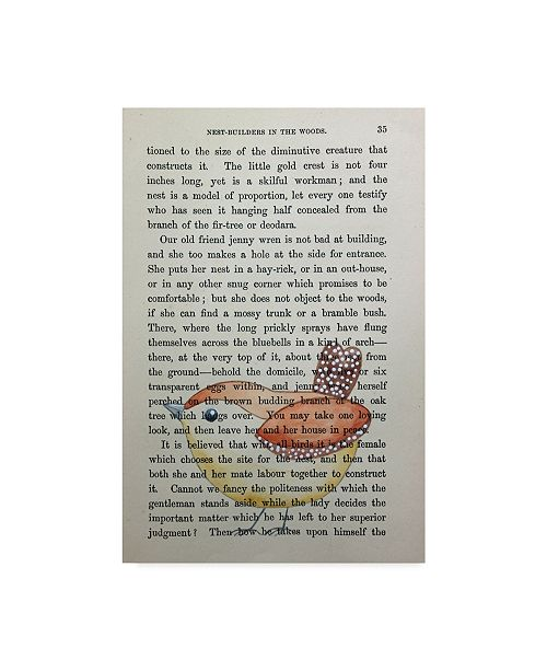 "Trademark Global Jane Wilson 'Jenny Wren' Canvas Art - 16"" x 24"""