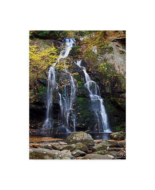 "Trademark Global J.D. Mcfarlan 'Spruce Flat Falls' Canvas Art - 24"" x 32"""