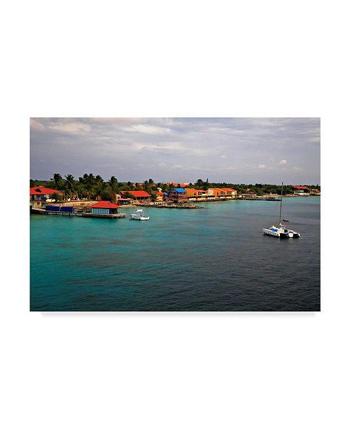 "Trademark Global J.D. Mcfarlan 'Bonaire 4' Canvas Art - 24"" x 16"""