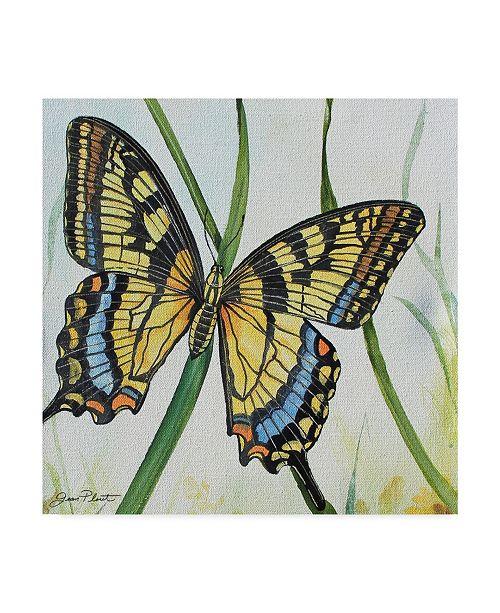 "Trademark Global Jean Plout 'Potanical Beauties 2' Canvas Art - 14"" x 14"""
