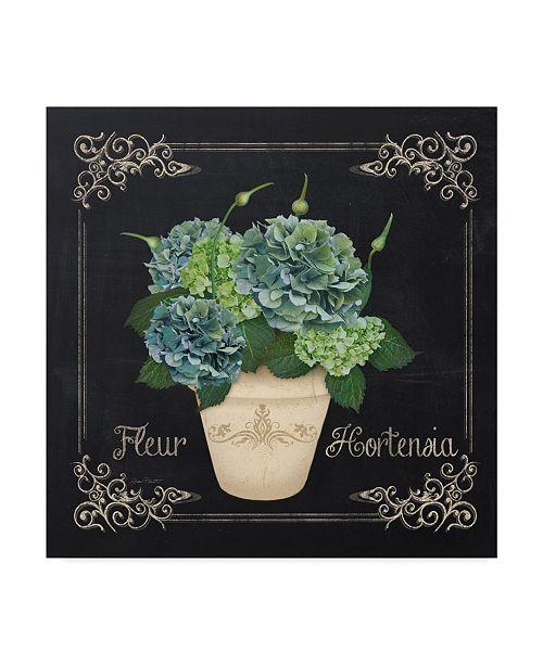 "Trademark Global Jean Plout 'Fleur Hortensia 5' Canvas Art - 18"" x 18"""