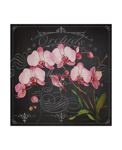 "Trademark Global Jean Plout 'Orchids Charcoal 2' Canvas Art - 18"" x 18"""