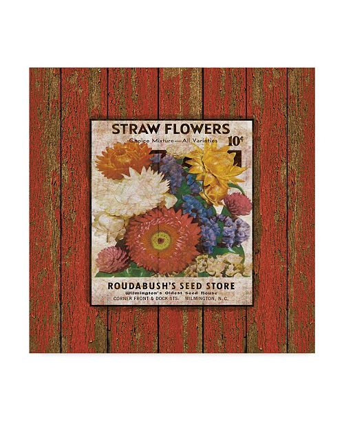 """Trademark Global Jean Plout 'Straw Flowers On Wood 5' Canvas Art - 18"""" x 18"""""""