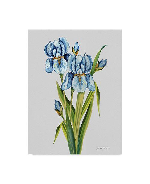 "Trademark Global Jean Plout 'Botanicals 7' Canvas Art - 18"" x 24"""