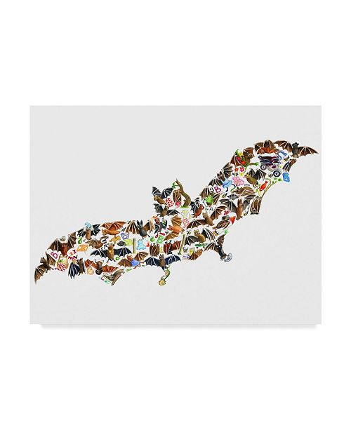 "Trademark Global Louise Tate 'Bat Collage' Canvas Art - 19"" x 14"""