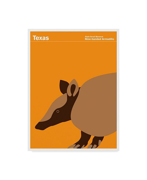 "Trademark Global Print Collection - Artist 'Texas Armadillo' Canvas Art - 14"" x 19"""