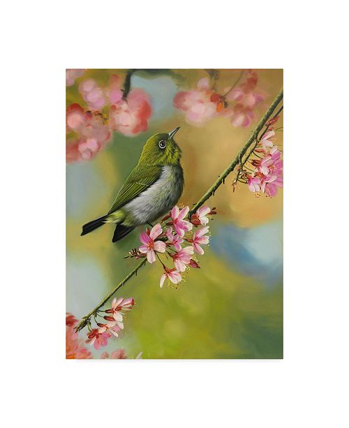 "Trademark Global Patricia Feathers 'Green Birds And Blossoms' Canvas Art - 18"" x 24"""