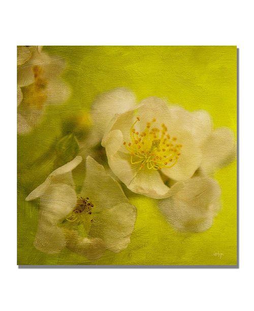 "Trademark Global Lois Bryan 'Sunrise II' Canvas Art - 18"" x 18"""