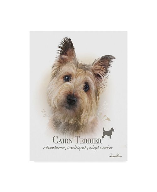 "Trademark Global Howard Robinson 'Cairn Terrier' Canvas Art - 35"" x 47"""