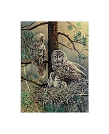 "D. Rusty Rust 'Great Gray Owl Family' Canvas Art - 24"" x 32"""