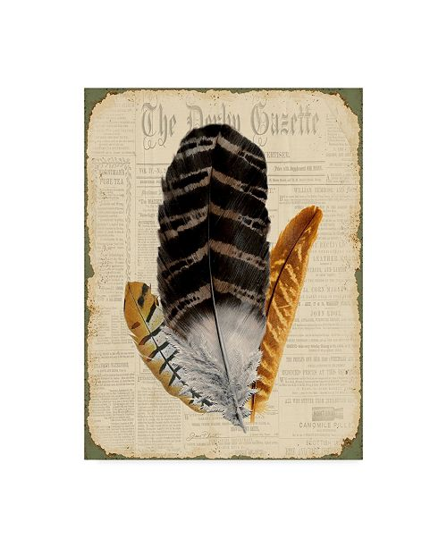 "Trademark Global Jean Plout 'Elegant Feather Black' Canvas Art - 24"" x 32"""