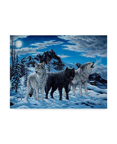"Trademark Global Jeff Tift 'Night Howl' Canvas Art - 24"" x 32"""
