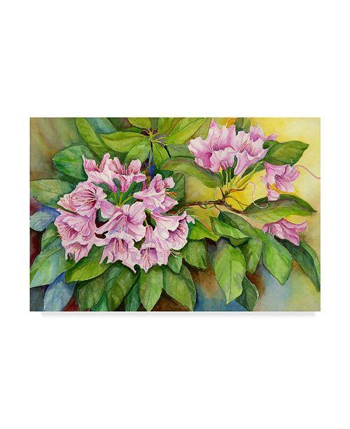 "Trademark Global Joanne Porter 'Pink Sunlit Azalea' Canvas Art - 30"" x 47"""
