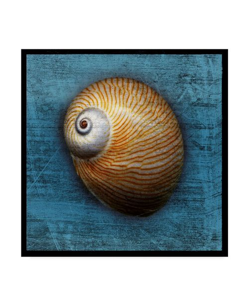 "Trademark Global John W. Golden 'Shark Eye Blue' Canvas Art - 24"" x 24"""