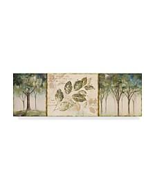 "Lisa Audit 'Hopes and Greens II' Canvas Art - 6"" x 19"""