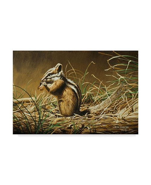 "Trademark Global Ron Parker 'Chipmunk' Canvas Art - 22"" x 32"""