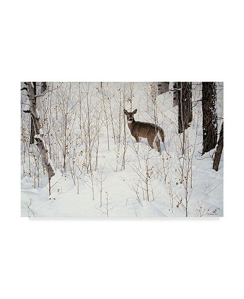 "Trademark Global Ron Parker 'Deep Snow Whitetail' Canvas Art - 30"" x 47"""