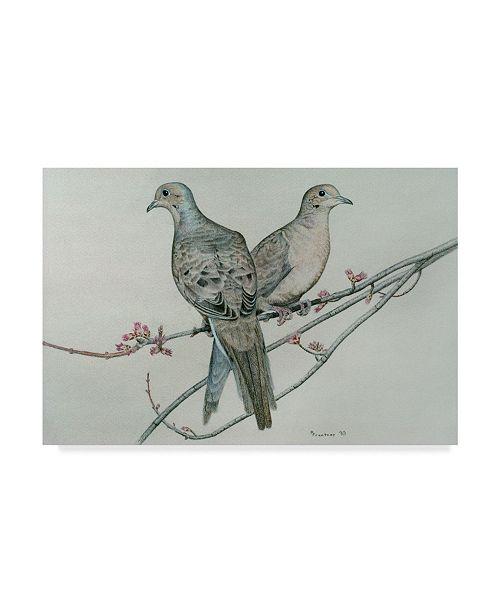 "Trademark Global Rusty Frentner 'Two Birds On Branch' Canvas Art - 22"" x 32"""