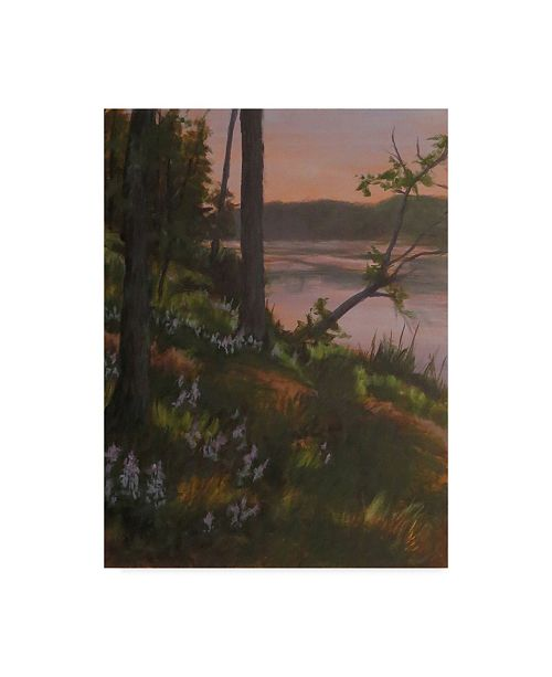 "Trademark Global Rusty Frentner 'Lupines' Canvas Art - 35"" x 47"""