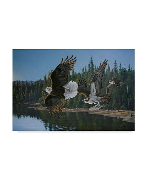 "Trademark Global Wilhelm Goebel 'Eagle Osprey' Canvas Art - 30"" x 47"""