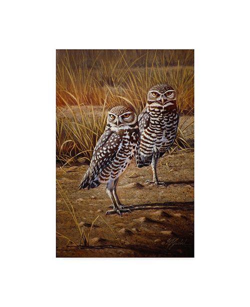 """Trademark Global Wilhelm Goebel 'Burrowing Owls' Canvas Art - 30"""" x 47"""""""