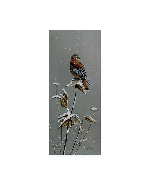 "Trademark Global Wilhelm Goebel 'Gentle Snowfall Kestrel' Canvas Art - 8"" x 19"""